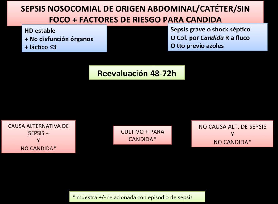 Algoritmo.antifúngico2   PROAntibióticos
