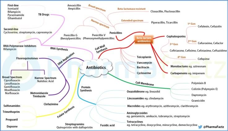 Mapa de antibióticos según su mecanismo de acción. Via @PharmaFactz